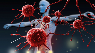 Here is Why Can CBD Boost Your Immune System wallpaper